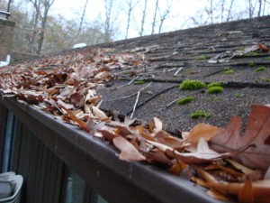 Is Your Guttering Clogged?